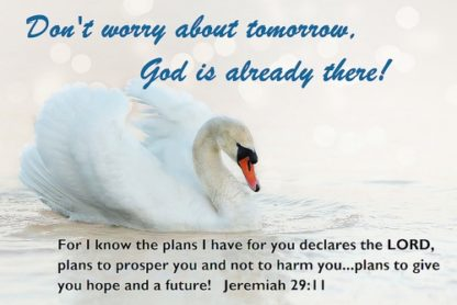 Dont Worry God is Already There Postcards